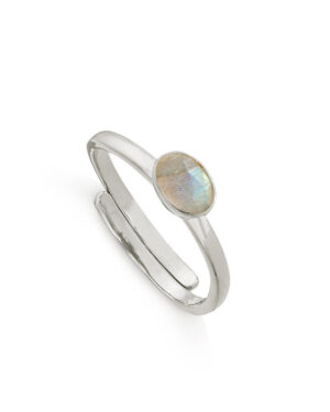 svp-atomic-micro-labradorite-ring